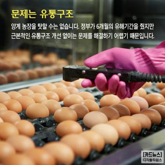 [카드뉴스] 달걀 껍데기가 바뀐다